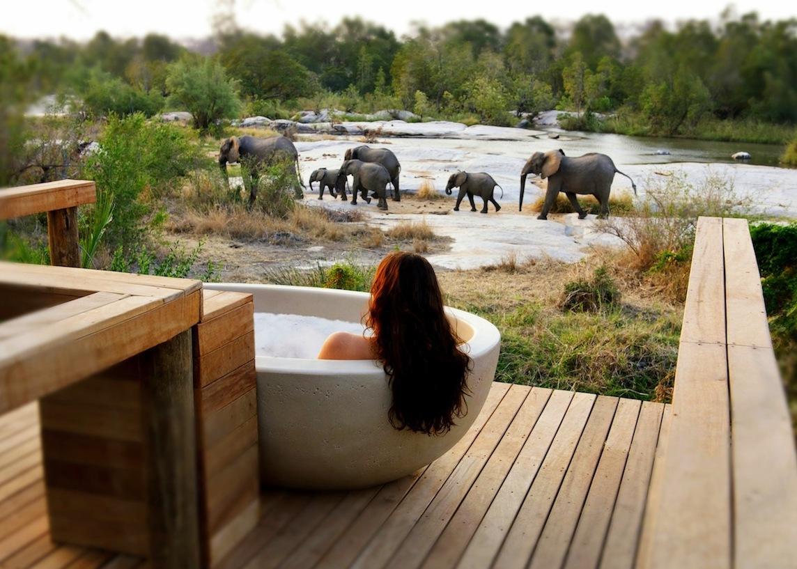شهر عسل في الربيع : إفريقيا الجنوبية