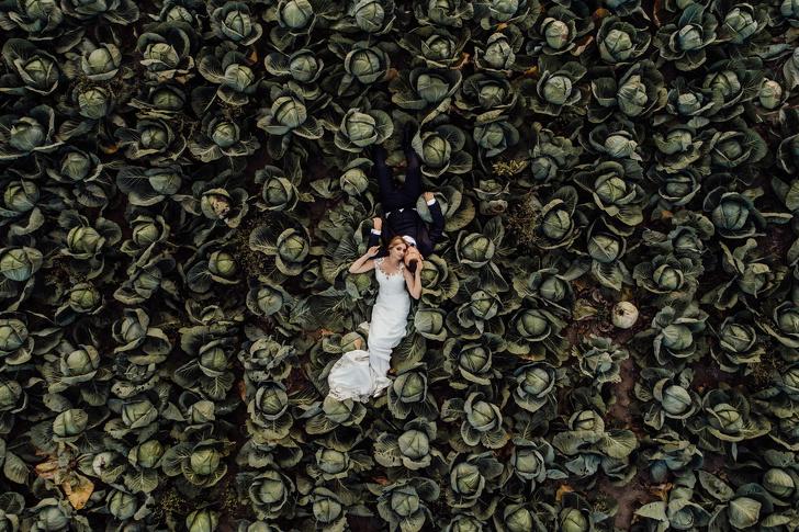 عريس وعروس في حقل ملفوف