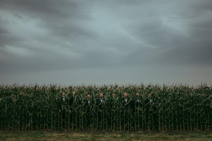 العريس مع رفاقه وسط حقل الذرة