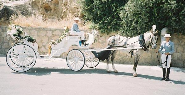 عربة مجرورة بالخيول