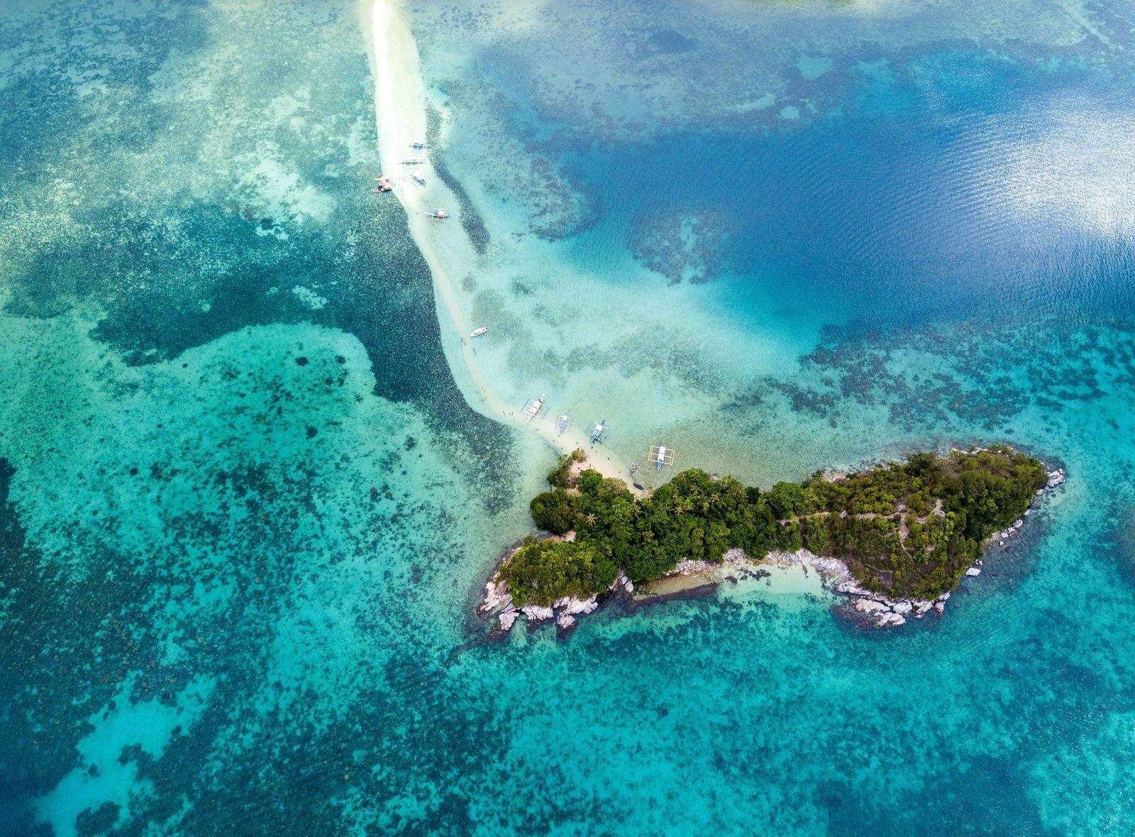 جزيرة الثعبان