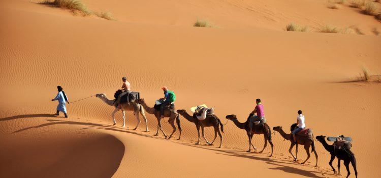 شهر العسل في المغرب