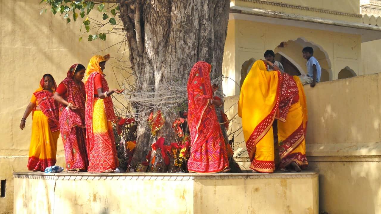 الزواج من شجرة