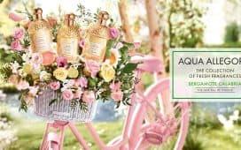 عطور زفاف غيرلان