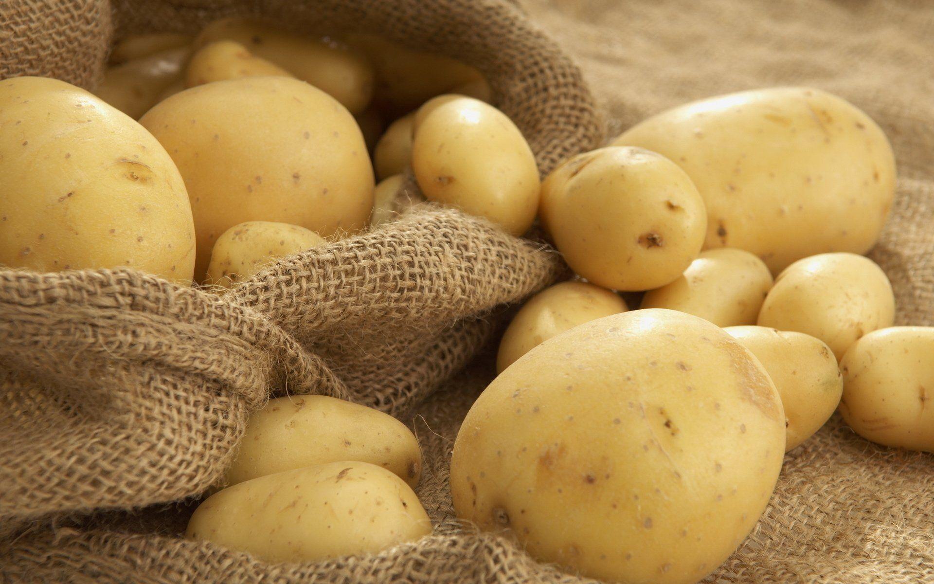 مكونات طبيعية لبشرة مشرقة : البطاطا الحلوة