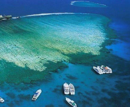 أجمل الجزر في البحر الأحمر