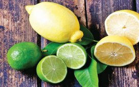 أفضل ماسكات الليمون لعلاج فراغات الشعر